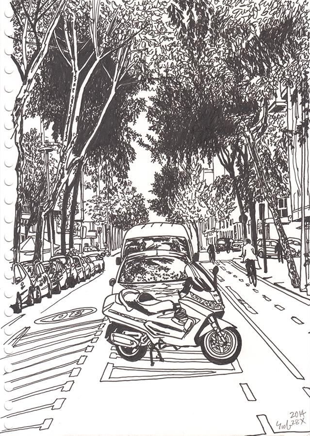 Dibujo de los árboles y carril de bicicleta en Carrer de Provença en barrio Clot de Barcelona