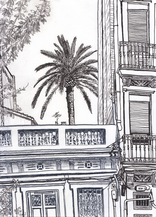 Drawing of the pine tree seen from Carrer del Rosselló in the Clot neighborhood of Barcelona