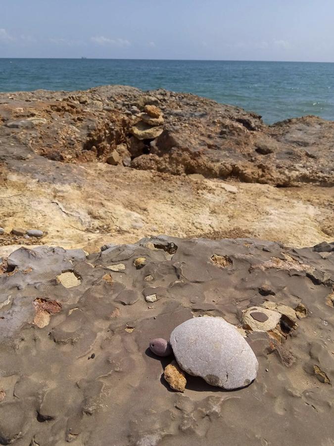 turtle made of stones on the Spanish coast