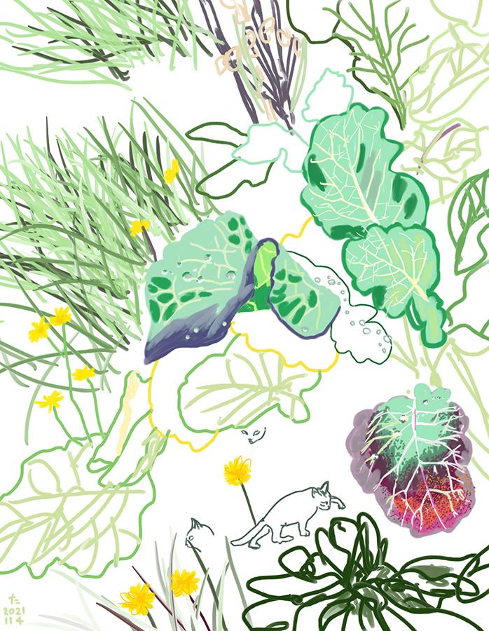 Il·lustració de plantes i gats de jardí