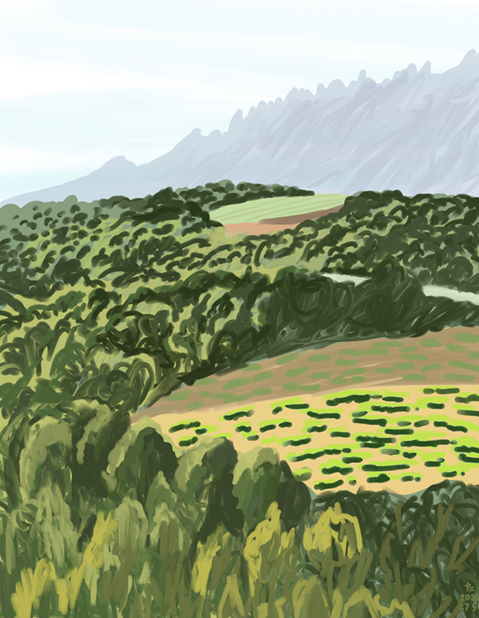 drawing of Montserrat mountain with Green field