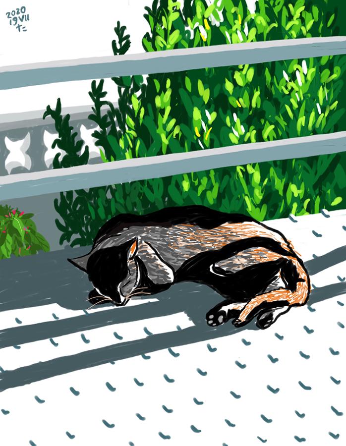 Dibuix de gat negre Gigi dormint a l'exterior