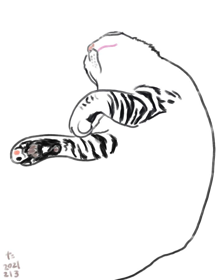 Il·lustració de gat petit dormint