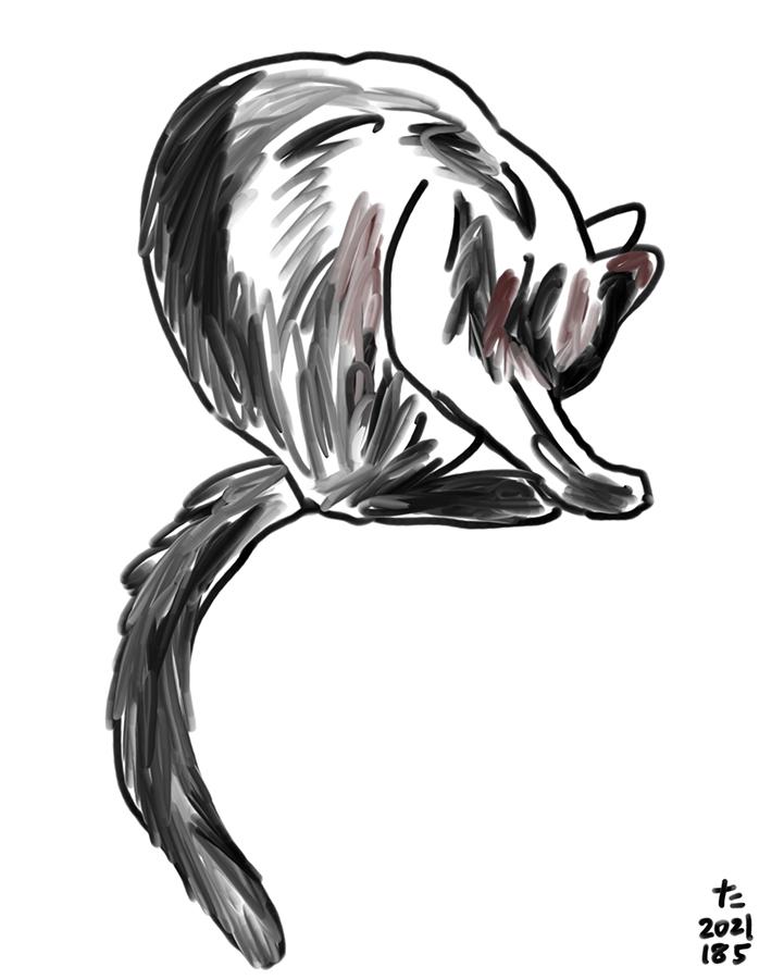 身体を舐めて洗う黒猫のジジのイラスト