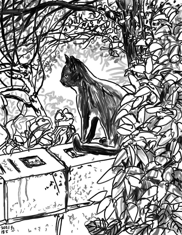 Una ilustración de gato negro en blanco y negro