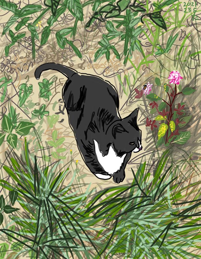 dibujo de una gata blanco y negro Ushiko descansando en el jardín