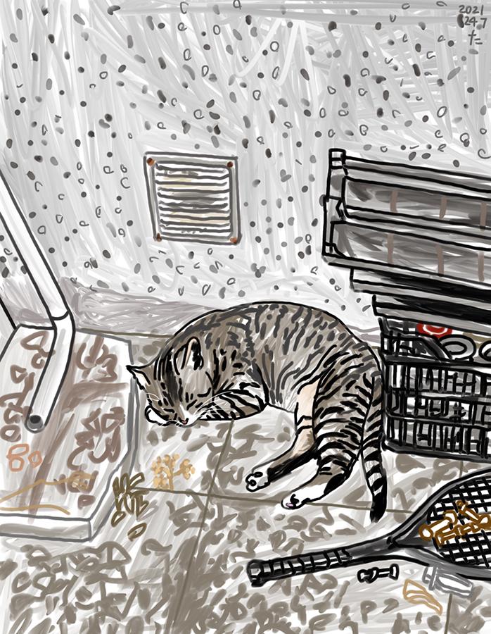 家の裏で寝る猫のチャイロのイラスト