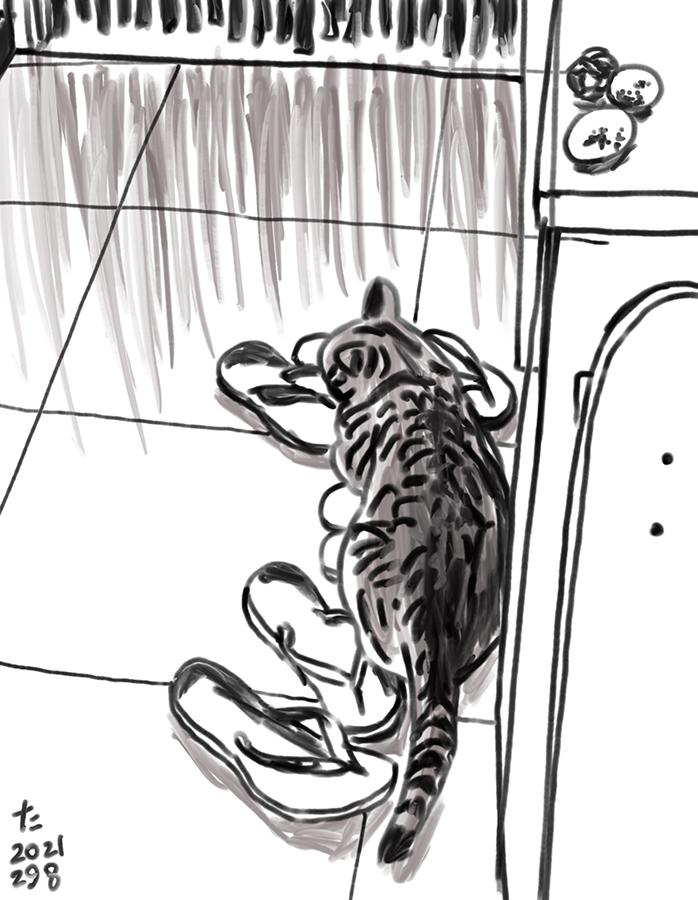 Dibujo de un gato descansando en cima de sandalias