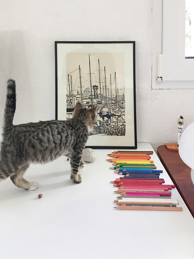 """a kitten Chairo looking at the drawing named """"The Smell of The Sea"""""""